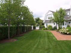 Do Up You Exterior with These Good Trees for Privacy: Suggestions For Trees Along Tall Privacy Fence ~ dmetree.com Best Of Inspiration