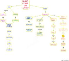 Mappa scienze:Ossa
