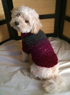 dog sweater christmas dog sweater dog coat gift by HappyDogLucky