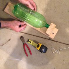 Easy humane mouse trap with a bottle and some wood. Fist you are going to take a 5 inch piece of wood and screw it in to a one and a half foot long piece of wood next get a coathanger cut a 9 inch strip out and a 5 inch strip out then bend the 9 inch at a 90° angle next make a hook shape in the other end of the 9 inch piece of coathanger then use the hook side to screw it into the board when you're done with that take the 5inch peice and bend it at 90° then make hook shapes at each end