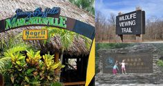 The best signs are seen during vacation! Comment below with cool signs from your #summer vacations.