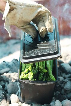 Der grüne Spargel in der Backform von Petromax/Dutch Oven in der Glut Köstliches Olivenöl aus Portugal   Arthurs Tochter kocht von Astrid Paul. Der Blog für food, wine, travel & love