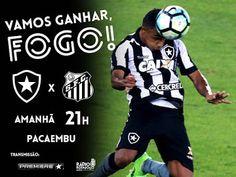 Blog do FelipaoBfr: Mirando o G-4, Botafogo vai a São Paulo onde enfre...