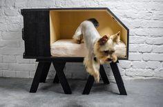 pet-design3_Blog-da-arquitetura