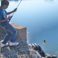 Get your Best Buddy Fishing Tackle Box today! http://www.bestbuddyfishing.com/pages/shop/