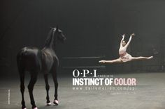 OPI released a short film entitled 'Instinct of Color'. Can anyone guess what's this about? Horse Barns, My Horse, Horse Love, Horses, Thoroughbred Horse, Dressage, French Dj, Dan Paris, Female Dancers