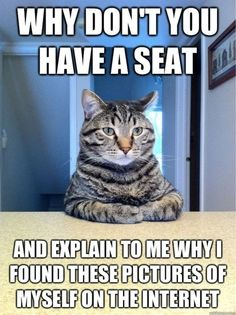 Ha this would be my cat