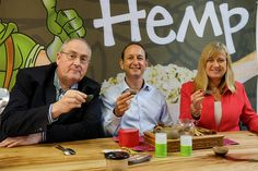 Hemp foods and cosmetics tied up in knots by regulations – Echonetdaily Hemp Seeds, Common Sense, Recipe Collection, Raising, Healthy Lifestyle, Nutrition, Australia, Foods, Tea