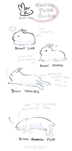 Maru's Bunny Relaxing Pose Guide by zeldacw on DeviantArt - Maru's Bunny Relaxing Pose Guide by zeldacw. Funny Bunnies, Cute Bunny, Drawing Tips, Drawing Reference, Cute Drawings, Animal Drawings, Baby Animals, Cute Animals, Posca Art