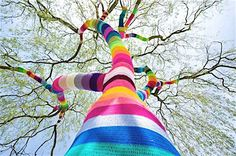 urban tree knitting