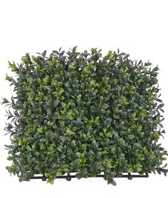 Premium grade artificial Buxus Hedge mat. 5cm deep UV treated mat for making artificial hedges. Top-grade with two-tone foliage and 300 tips, this boxwood mat makes amazing fake hedging
