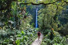 Akaka Falls State Park on the Big Island's.