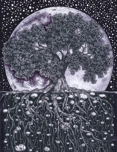 Tree of Life… I like this one too with the moon behind it :-)