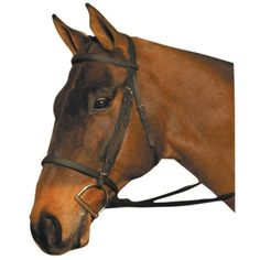 Check out the deal on Wintec Bridle at Charlotte's eCatalog
