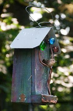 House Wren guarding chicks in bird house Bird House Feeder, Bird Feeders, Casa Do Rock, Wren House, Bird House Kits, Bird Boxes, Bird Cage, Yard Art, Beautiful Birds