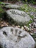 Homemade handprint stepping stones