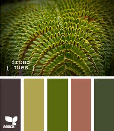 Design Seeds...for all who love color, the greatest site for eye candy and color inspiration
