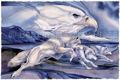 Running with the Wind- Jody Bergsma (retired)