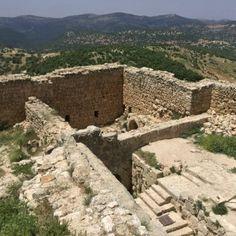 el castillo de Ajloun12
