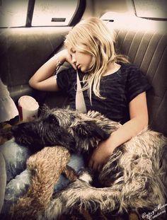 Little girl traveling with her Irish Wolfhound Huge Dogs, I Love Dogs, Puppy Love, Irish Dog Breeds, Irish Wolfhound Dogs, All Types Of Dogs, Scottish Deerhound, Virtual Pet, Irish Setter