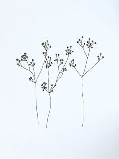 Flowers– among life's little satisfactions – Ideas For Great Gardens Botanical Line Drawing, Floral Drawing, Botanical Drawings, Illustration Botanique, Plant Illustration, Flower Tattoos, Small Tattoos, Garden Drawing, Hand Drawn Flowers