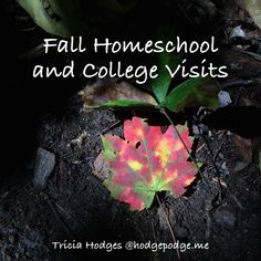 The fall homeschool and college visits - homeschooling multiple ages from elementary to high school.