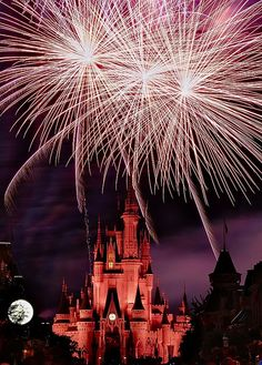 Walt Disney World | Keep The Class ♡ ✤ LadyLuxury ✤