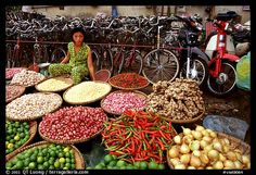 Vegetables and Spices Ho Chi Minh City Vietnam