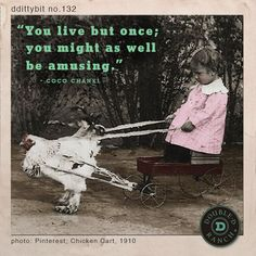 """dittybit no. 132 """"You live but once, you might as well be amusing."""" -Coco Chanel"""