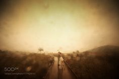 Rainy Day by rince30