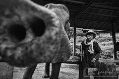Mae-sa Elephant Camp Trainer, Chiang Mai by www.facebook.com/josephgohphotography