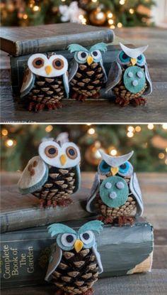 Cone Owls