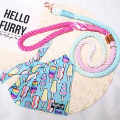 Singapore | Dog Harness | Personalized Dog Bandana | Custom Bowtie Cat Bow Tie, Bandana Bib, Pet Tags, Dog Harness, Dog Accessories, Singapore, Dog Cat, Reusable Tote Bags, Bows