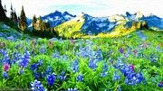 Landscape Show by Victoria Mishina