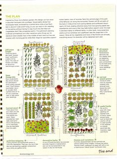 Vegetable garden plan from Domino Magazine.