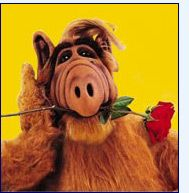 ALF= Alien Life Form....from the planet Melmack