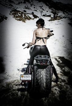 Harley Davidson-8