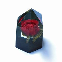 Preserved rose in clear resin Crystal point encapsulated