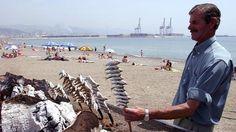 Un cocinero hace espetos de sardinas en una playa malagueña.