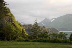 Kodiak Island Alaska in may at  am  #landscape #kodiak #island #alaska #photography