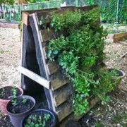 Successful Organic Gardening in a Lilited Space