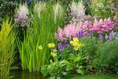 Climate Zone 6 planting: Spring Combination Ideas, Plant ... on backyard design zone 6, garden design zone 4, garden design zone 8, garden design zone 9, rain garden plants zone 6, rock garden plants zone 6,