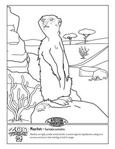 memphis zoo coloring pages - photo#16