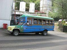 Samoa Bus.