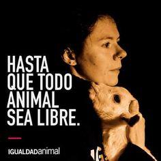 ¡¡¡NO PODEMOS PARAR!!! DEFENDEMOS A LOS ANIMALES