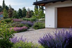 Zahrada zvlněná   Atelier Flera Planter Beds, Patio Planters, Landscape Architecture, Landscape Design, Garden Design, Boxwood Garden, Herb Garden, Sidewalk, Herbs