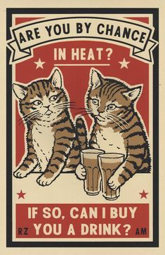 Three color screen prints by Arna Miller & Ravi Zupa, featuring fun and whimsical images of cats drinking at bars. Available for purchase online through Spoke Art Gallery. Crazy Cat Lady, Crazy Cats, Illustrations, Illustration Art, Drunk Cat, Spoke Art, Matchbox Art, Cat Drinking, Cat Posters