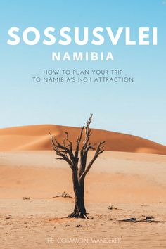 Our comprehensive guide to Namibia's beautiful Sossusvlei national park. Covering everything from when to visit, where to stay, how to get around safely, what to see and do (Dune 45 and Deadvlei included! Uganda, Travel Guides, Travel Tips, Travel Hacks, Chobe National Park, Africa Destinations, Travel Destinations, Namibia, Roadtrip