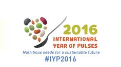 What are pulses and why are they important crops for food security?