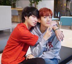 Baekhyun and Heechul